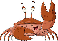 Crab on a white background, vector illustration