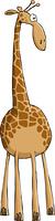 Funny Giraffe on white background, vector illustration