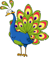 Peacock on a white background, vector illustration
