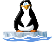 Penguin on a white background, vector illustration