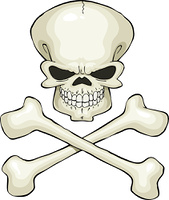 Skull and crossbones on a white background, vector
