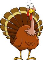 Turkey on a white background, vector illustration