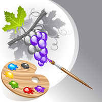 Coloring the grape cluster by paint brush