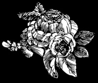 Roses on black in woodcut print style.
