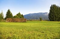 Alps morning landscape