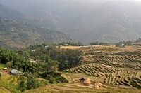 A scenic view of rural farmlands in the Himalayas, Nepal