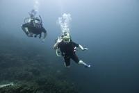 Underwater scene with scuba divers