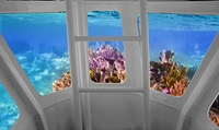 Tropical reef view from underwater submarine bow view