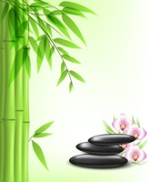 Vector background with green bamboo and spa stones