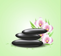 Vector green background with orchids and spa stones