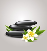 Vector background with flowers and spa stones