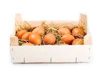 brown eggs in wooden box on white background