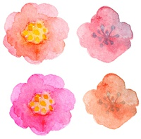 Set of vector watercolor floral elements for design