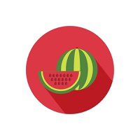 Watermelon icon with shadow in flat design