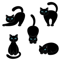 Set of cats on a white background.