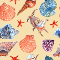 Marine shell seamless pattern. Marine shells and starfish on the sea beach summer vacation wallpaper decorative tileable abstract seamless vector illustration