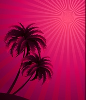 Vector sunset background . Vector sunset background with palm tree silhouette. For poster or flyer design