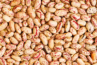 Bunch of beans arranged as a background