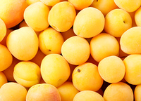 fresh apricots as background