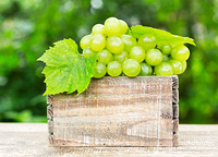 green grape with leaves in the wooden box