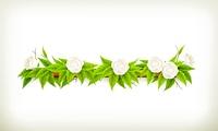 Flowers banner, vector