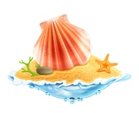 Seashell in the sand, vector illustration