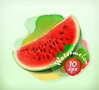 Watermelon, summer fruit, vector illustration