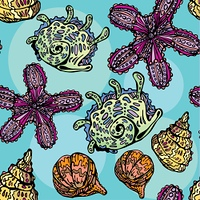 Seamless background with sea life - pattern with shells and sea stars. Handdrawn picture.