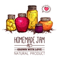 Homemade jam poster with hand drawn glass jars set vector illustration. Jam Jars Poster
