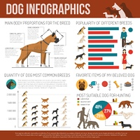 Dog infographics set. Dog infographics set with breeds symbols and charts vector illustration