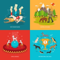 Dog concept set. Dog breeds design concept set with circus racing and hunting animals flat icons isolated vector illustration