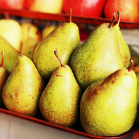 Tray of pears on the table