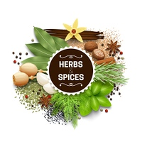 Illustration Of Set With Herbs And Spices. Illustration of set with different types of herbs and spices vector illustration
