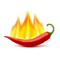 Flaming Hot Chili Pepper Pod Image. Flaming red chili pepper pod image as symbol of spicy world hottest food ingredient realistic vector illustration