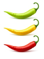 Chili Pepper Pods Set Realistic Shadow . Hot chili peppers pods red yellow and green realistic image on white background with shadow isolated vector illustration