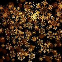 Golden snowflake on a dark background. Golden snowflake on a dark background. Vector illustration