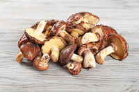 Edible wild mushrooms on a wooden background