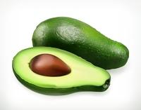 Avocado, fruit vector object