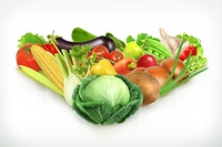 Cabbage, harvest juicy and ripe vegetables vector illustration