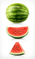 Watermelon, vector icons set