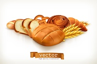 Bread, vector illustration isolated on white
