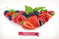 Forest berry. Sweet fruit. Vector illustration isolated on white