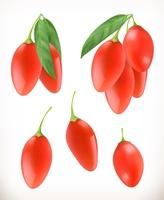 Goji berry. 3d vector icons set. Realistic illustration