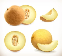 Melon. Whole and pieces. Sweet fruit. 3d vector icons set. Realistic illustration