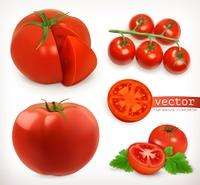 Tomato. Vegetable 3d vector icon set