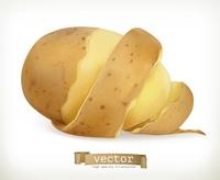 Vegetable potato peel spiral. Vector food
