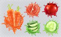 Aloe juice, carrots, grapefruit, pomegranate, cucumber. Health and care. 3d vector icon set