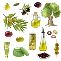 Olive Cartoon Set. Olive cartoon set with olive tree and oil isolated vector illustration