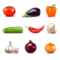 Set Of Fresh Vegetables Icons . Set of fresh vegetables in realistic style with courgette tomato onion cucumbers pepper eggplant garlic mushroom isolated icons vector illustration