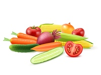 Colorful Fresh Vegetables Template. Colorful fresh vegetables template with cucumber tomato beet carrot onion and corn isolated vector illustration